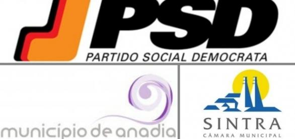 Os municípios de Anadia e Sintra vão este ano a votos