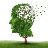 Perda de memória; desvanecimento das recordações.