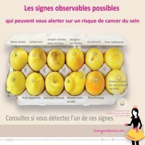 Repérer les signes du cancer du sein grâce aux citrons ... - sciencesetavenir.fr Traduite