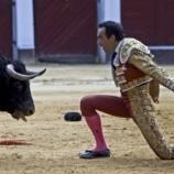 Bullfights are back in Bogotá, this time for good - Latin ... - latincorrespondent.com