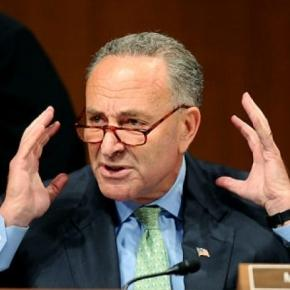 Image result for chuck schumer freaking out