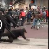 Policjanci rozpędzili na cztery wiatry wojujących anarchistów.
