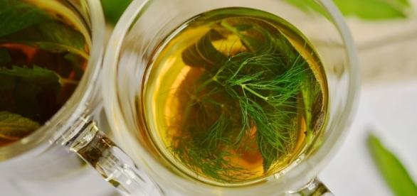 El té verde se trata del antioxidante más potente que existe