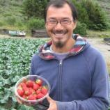 Arktische Oasen: Landwirtschaft in Südgrönland | Breitengrad ... - br.de