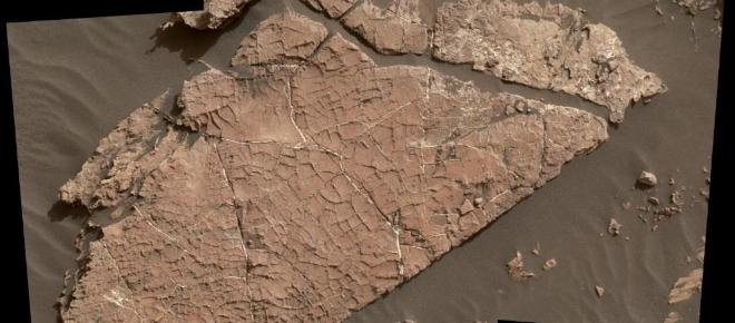 Pieces of mud with cracks discovered on Mars