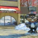 Punxsutawney Phil groundhog day, photo by john mccormick