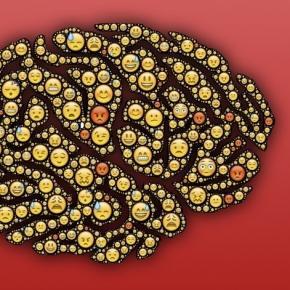 El tamaño de tu cerebro puede indicar cómo eres