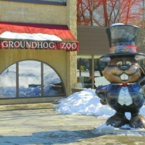 Punxsutawney Phil groundhog day, photo by john mccormick