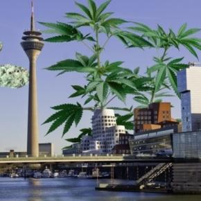 Kiffen in Düsseldorf: Legalisierung von Cannabis zu Testzwecken ... - highway-magazin.de