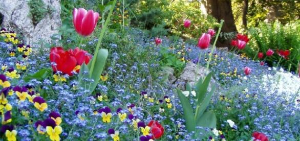 Meteo, un pò di primavera a San Valentino