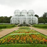 Estufa do Jardim Botânico de Curitiba. Imagem: Shutterstock.