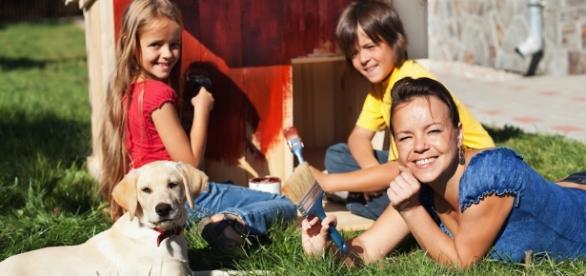 Detrazioni fiscali per gli animali domestici: ecco come fare   Gli ... - maxizoo.it