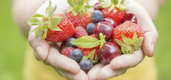 El cultivo ecológico es el medio de producción agraria y ganadera sostenible con múltiples beneficios para la salud