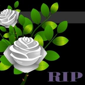 Rugby world mourns three deaths in february Image via CC0 Public Domain, Pixabay