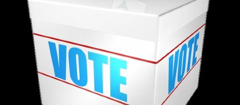 Le vote: l'arme fatale...contre le peuple.