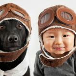Son los perros los que se parecen a sus dueños o es al revés? | dumts - dumts.es