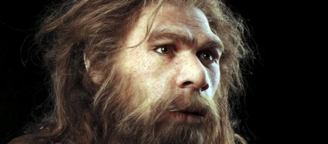Humans and Neanderthals share bits of DNA