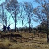 Jornada de riego y limpieza colectivo Salvando al Cerro de Amalucan