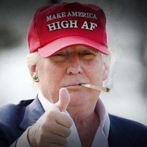 Fotomontaggio che ritrae Donald Trump con una canna di marijuana in bocca