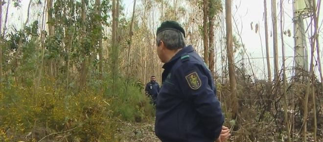 Homem de 43 anos encontrado morto em Santa Maria de Avioso, na Maia