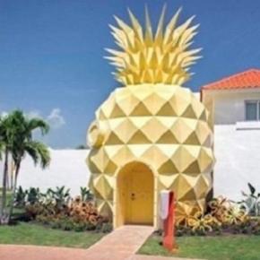 Passer la nuit dans la maison ananas de Bob l'éponge ? Un rêve devenu réalité !