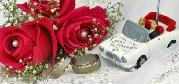 hochzeit bilder | Wedding Portal - ipnodns.ru