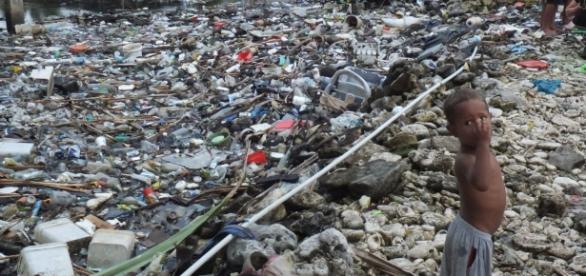Can our oceans be saved from environmental ruin? - CNN.com - cnn.com