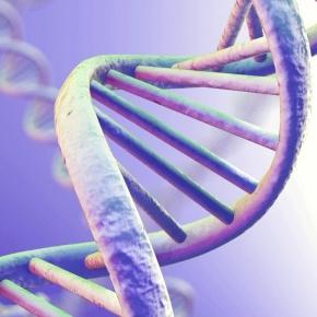 La biotecnologia en Jerez es pionera ahorrando costes sin productos químicos