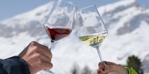 De dl vin - Wine Skisafari - altabadia.org