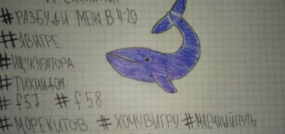 Zabójcza gra internetowa Niebieski Wieloryb. Ostatnim zadaniem jest popełnienie samobójstwa (fot. missgorilla.pl)