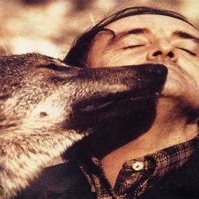 Félix Rodríguez de la Fuente junto al lobo ibérico