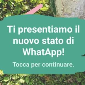 Stop alla funzione stato di Whatsapp ispirata alle Storie di ...