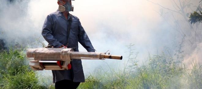 VN warnen: Gebrauch von Pestiziden tötet im Jahr 200 Tausend Menschen