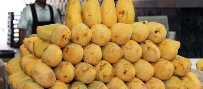 Jalisco aumenta la producción de mango