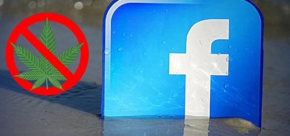 Facebook censura la Cannabis e minaccia di chiusura la pagina di ... - dolcevitaonline.it