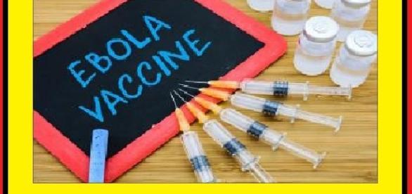 Arrivano i primi vaccini anti-ebola nella fase di sperimentazione clinica.