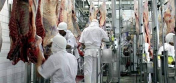 Operação Carne Fraca coloca na cadeia executivos e funcionários de frigoríficos