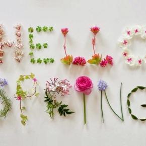 Da la bienvenida a la primavera con alguna de estas 10 originales ... - blogspot.com