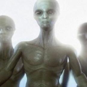 ' Gli alieni potrebbero aver programmato il nostro DNA'  |  dicono due scienziati