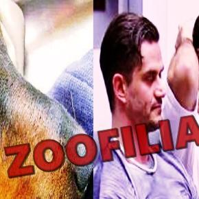 Zoofilia é revelada no BBB - Imagem/Google