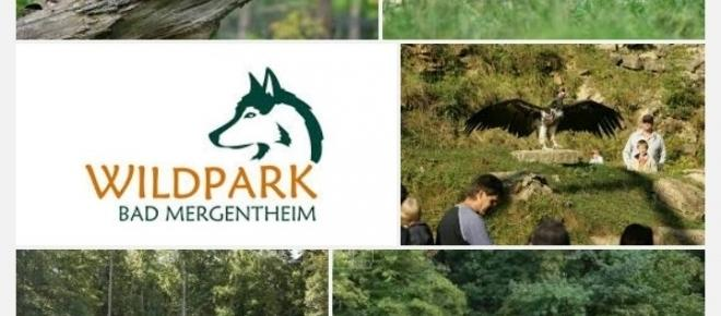 Der artenreichste Wildpark von Europa in Bad Mergentheim