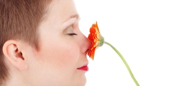 Se non riesci più a sentire bene gli odori? Forse la morte è più vicina