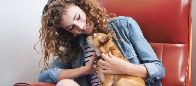 Why do dogs make great companions, according to recent studies?