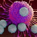 Lo Stivale Pensante | La maggior parte dei tumori è dovuta dal ... - lostivalepensante.it