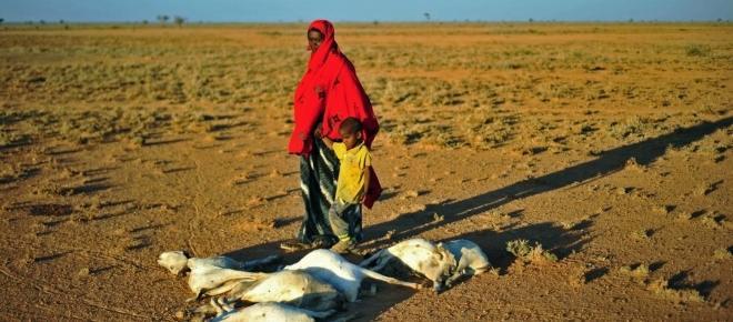 Famine alert for Somalia - Is anyone listening?