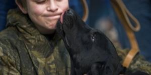 Cachorro está sendo visto como um herói