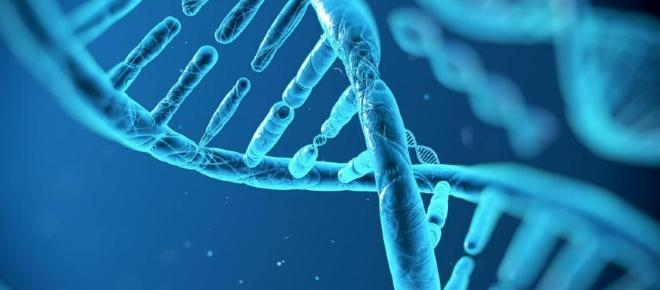 Da Mendel fino all'editing genetico: l'avventura affascinante del DNA