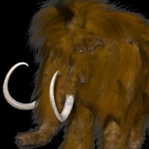 Mammoth ractapopulus, picabay.com CC0