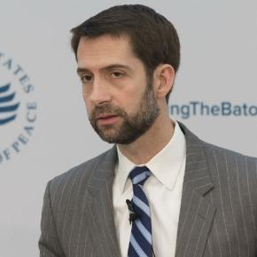 Cotton: Special prosecutor talk is 'getting ahead of ourselves ... - thehill.com