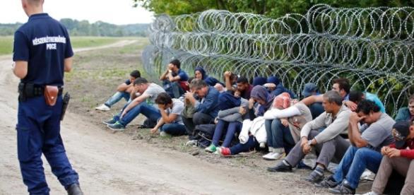 Europe migrant crisis: Germany's 'open door' refugee employment ... - net.au